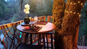 tree house creature comforts home u0026 garden eugene oregon