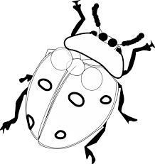 cartoon clipart black white happy ladybug sign