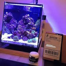 Floating Aquascape Reef2reef Saltwater And Reef Aquarium Forum - 286 best reef tank aquascapes images on pinterest reef aquarium