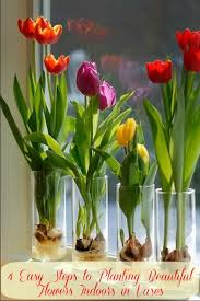 Flowers In Vases Pictures 4 Easy Steps To Planting Beautiful Flowers Indoors In Vases
