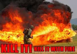 Fire Meme - burn it kill it with fire viral viral videos