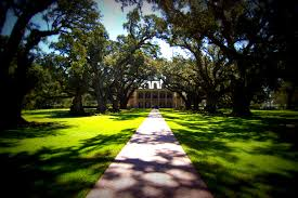 oak alley plantation louisiana life with a view