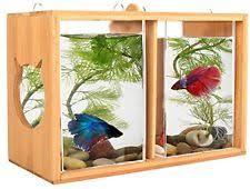 Betta Fish Vase With Bamboo Square Fish Bowls Ebay