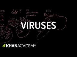 Virus Of The Mind The New Science Of The Meme - viruses video khan academy