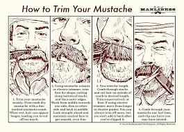 How To Cut A Blind To Size How To Trim Your Mustache An Illustrated Guide The Art Of Manliness