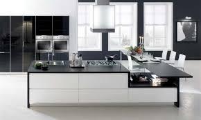 Kitchen Designers Sydney Modern Kitchens Designs Sydney European Wardrobes Sydney