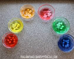 jelly bean science experiment fspdt