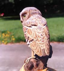 jerry dollar carved wood sculpture owl available now