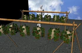 Hanging Vegetable Gardens by 28 Hanging Vegetable Garden A Hanging Vegetable Garden