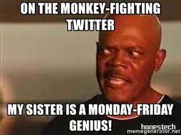 Snakes On A Plane Meme - on the monkey fighting twitter my sister is a monday friday genius