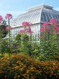 Quail Botanical Gardens Free Tuesday 328 Best Botanical Gardens Images On Pinterest Beautiful Gardens