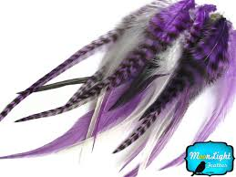 moonlight feathers 325 best snow white 2015 images on snow white