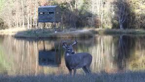 Best Deer Hunting Blinds Deer Blinds Standley Feed And Seed