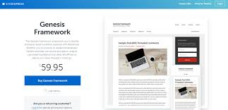 best wordpress themes for bloggers darshan saroya