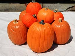 how to make a halloween pumpkin faux bonfire how tos diy