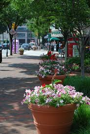best 25 bethesda maryland ideas on pinterest washington dc