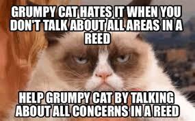Make Your Own Cat Meme - th id oip r7sec9wge8v0bqme7yaemqhaem