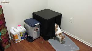 make cat furniture litter box using ikea lack table in 5 minutes