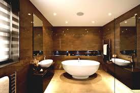 basic toilet design home ideas classic bathroom basic bathroom