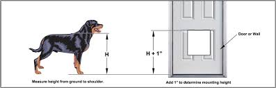 Cat Door For Interior Door How To Install A Doggie Door Quickly Easily U0026 Perfectly