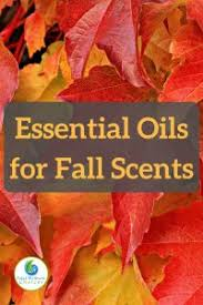 fall scents 20 essential oils for fall scents and 9 diy autumn diffuser blends