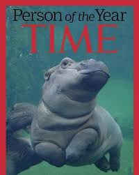 Hippo Memes - person of the year fiona the hippo know your meme