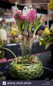flowers international flower arrangement bulbs in the air at cake international the