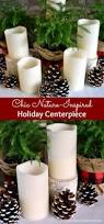 chic nature inspired holiday centerpiece