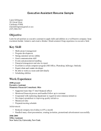 Job Resume Objective Examples by Career Objectives Examples For Executive Assistant
