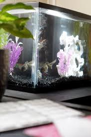 Aquarium For Home Decoration Fish Aquariums Decor For Home And Office Life U2013 The Domestic Diva