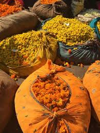 wholesale flowers near me our guide took us to the wholesale flower market in jaipur it was