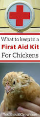 What To Feed Backyard Chickens by 158 Best Chickens Images On Pinterest