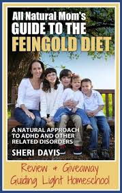 ebook review u0026 giveaway u2013 all natural mom u0027s guide to the feingold
