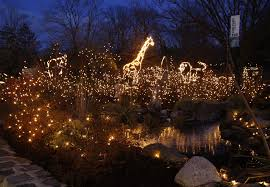 turtle back zoo light show 2017 amazing holiday light displays in central new jersey weiniger