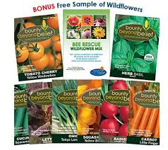 seed packets bulk non gmo heirloom seeds a thrifty recipes crafts diy and more