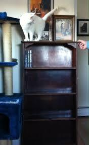 47 best jjv shop furniture images on pinterest mid century