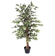Office Plants Artificial Office Plants Low Maintenance Office Plants
