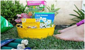 diy fairy garden u2014 kindasillymommy