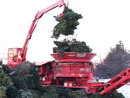Christmas Tree Pick Up Recycle That Christmas Tree Fred Beans