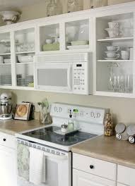Kitchen Cabinet Door Fronts Remove Upper Cabinet Doors If Glass Door Fronts Are Out Of The
