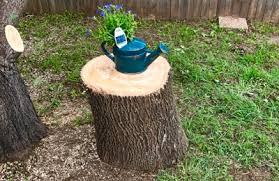 browns tree brown s tree service 5200 sabelle ln haltom city tx 76117 yp
