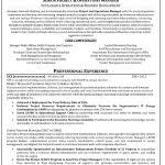 Best Professional Resume Writers by Professional Resume Writing Services Inspiredshares Com