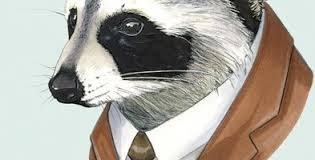 Raccoon in Suit