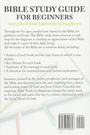 bible study guide for beginners each of the 66 books explained