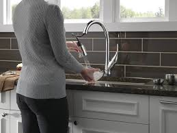 Kwc Domo Kitchen Faucet by Delta Esque Single Handle Pull Down Kitchen Faucet With Touch2o