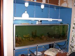 Wall Aquarium by Fish Aquarium Wall