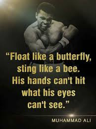 383 best float like a butterfly sting like a bee images on