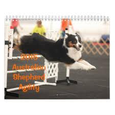 australian shepherd 2015 calendar sports calendars zazzle