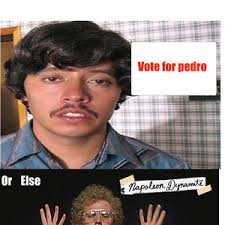 Pedro Meme - vote for pedro by poonadz meme center