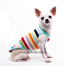 rainbow teacup clothes chihuahua sweater pet boutique